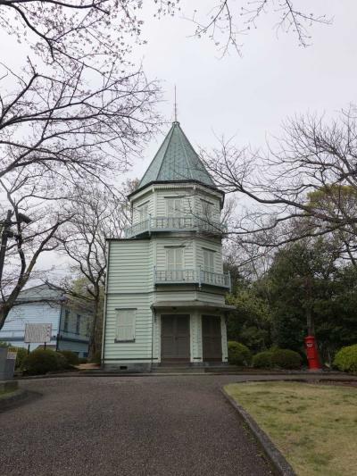 桜見物 2020.03.30 =3.自転車でGO!広見公園=