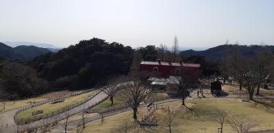六甲山ドライブ