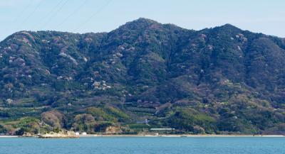 Sakura Tour 1 竹原~大久野島