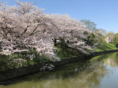 密を避けて春を愛でるマダム旅 福岡編その2 福岡城址~天神
