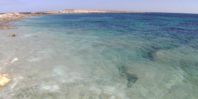 大晦日からマルタ島とキプロス島を巡るドライブ旅(猫とのふれあいも楽し♪)【5】ゴゾ島からマルタ島北東部へ セントジュリアン→スリーマ