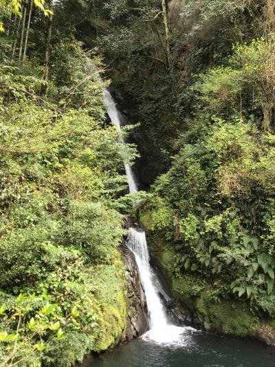 帰り道の途中に藤本滝の看板が目についたので藤本滝に行って見ました
