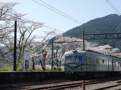 今年も見に来ました家山駅周辺の桜 2020.04.05