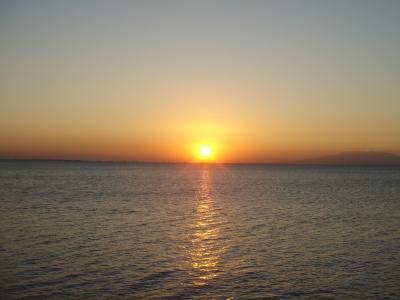 野生のジンベイザメと一緒に泳ぎたい♪ ③ (イントラムロスとマニラ湾の夕日)