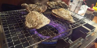 広島はしご酒/蔵出し旅行記