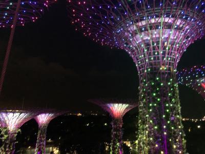 ハネムーンで行くシンガポール
