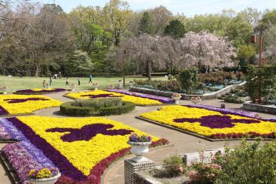 数年ぶりに田舎道を自転車で向かった智光山公園~明るい大花壇と枝垂れ桜のさざ波が美しかった都市緑化植物園