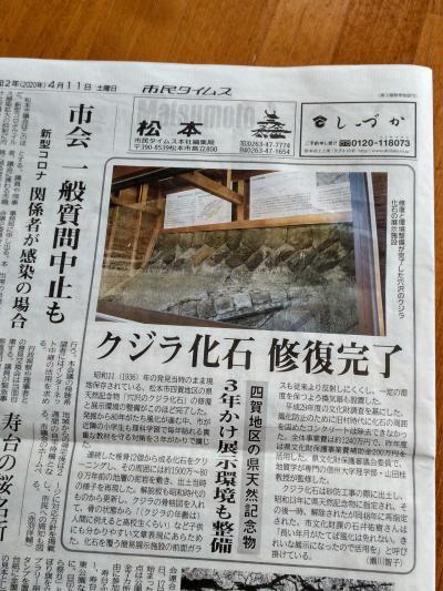 鯨骨の化石と、藁の道祖神