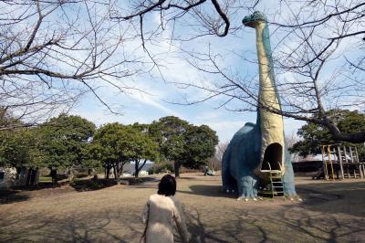 19.早春の鹿児島2泊 桜島自然恐竜公園