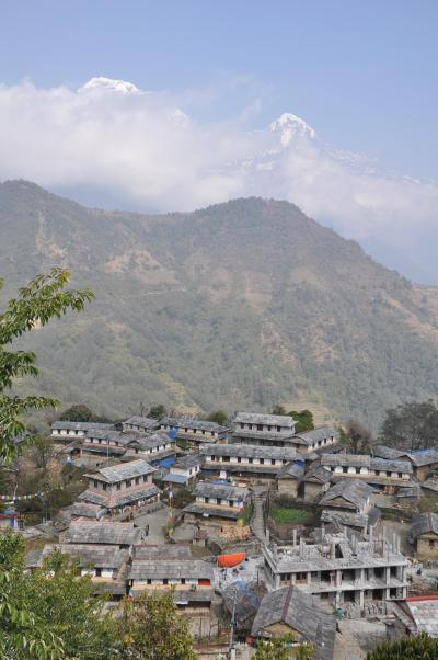 ネパール初めてのトレッキングNO3(トレック最終日)