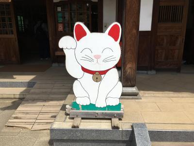 招き猫発祥の地といわれる豪徳寺を参拝しました/彦根藩主の井伊家菩提寺