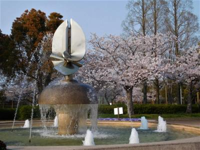 2020年4月 山口県・山陽小野田市 須恵健康公園3回目の花見。スーパームーン