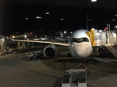 2020毎年恒例のバリ島一人旅、その1またマレーシア航空ビジネスクラスにお世話になりました。