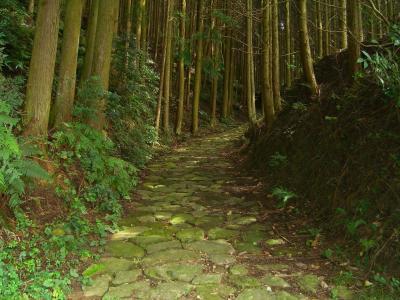 【2007年9月】和歌山ひとり旅(前編):熊野古道と熊野三山へ