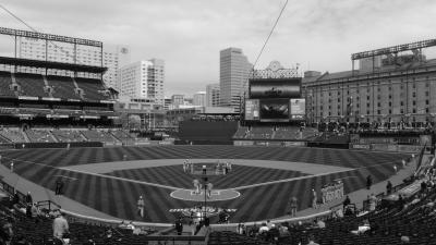 アメリカで花見&MLB観戦5