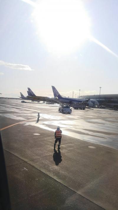 ANA様JAL様、航空関連皆様! 耐え頑張ってください!【最北端へ⑥】浅草、稚内。