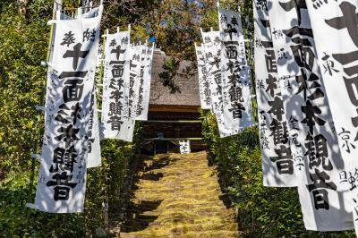 鎌倉/湘南ぐるり旅【17】~苔の石段が美しい~杉本寺