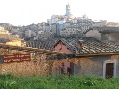 イルミネーションの季節のイタリア旅2019-20~④クリスマスのシエナ(2)