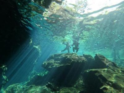 水中の絶景☆