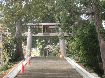 伊豆山神社の参道を歩く