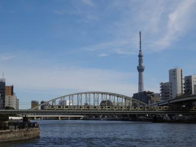 1歳5ヶ月の空旅デビューはピーチ&JAL【親子で東京往復記2月編その2】