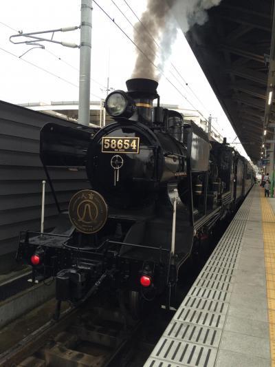 ようやく乗車!ガラガラでしたがSL人吉・いさぶろうしんぺい・はやとの風に乗って鹿児島へ【前半】@2016年GWの旅は観光列車でGO~【2】