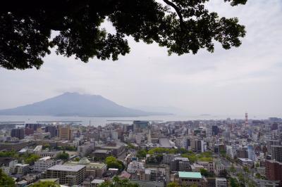 20200419-1 鹿児島 城山遊歩道散歩