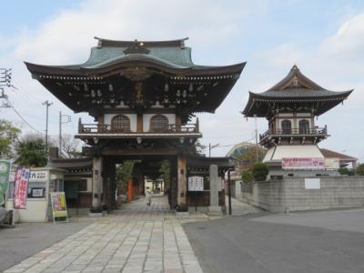 松戸の新松戸駅前から新坂川緑道を歩いて馬橋の萬満寺へ