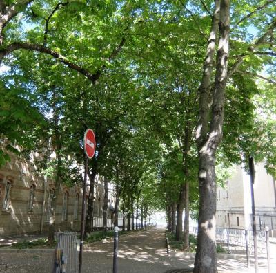 戦時下のパリ ー15区の片隅からー その4