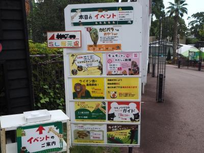 """2018年10月 大牟田市動物園に行ってきました。イベント""""リスザルウォッッチング"""""""