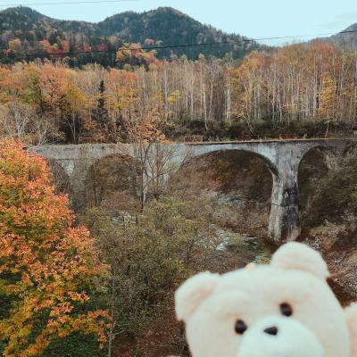 【北海道・紅葉】旧国鉄 士幌線 第五音更川橋梁 2020.10【ドローン空撮】