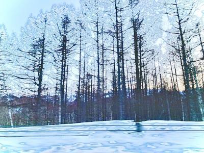 北海道3月弾丸旅行 その2
