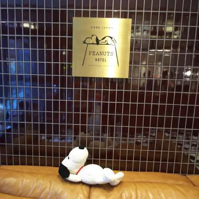 あの台風の中行った!神戸&大阪旅行 神戸うまい飯編