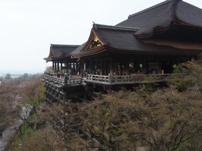 桜を撮りに京都へ<清水寺から建仁寺>