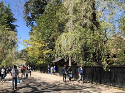2019年5月、初夏の秋田角館と岩手盛岡を巡って日本の近代の歩みをみちのくから探訪(1)