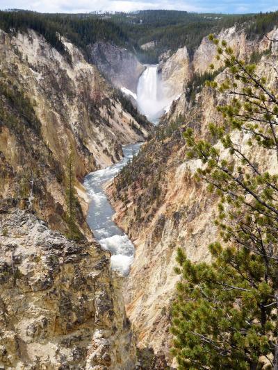 2019年5月 アメリカ5日目 その3 イエローストーンのロウアー滝とアッパー滝