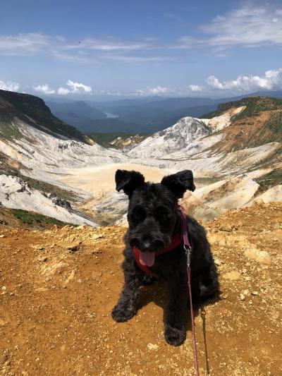 愛犬と登山~筑波山麓に訪ねる坂東三十三観音霊場と初秋の安達太良山