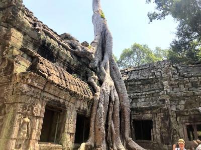 バンコク・シェムリアップ・クアラルンプール周遊旅行 ⑩ ~神秘的なタプローム寺院~