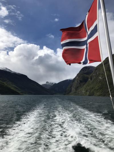 混乱の10連休、北欧の美しい自然と街巡りの旅:スウェーデン、ノルウェー旅行【17】(2019年GW 5日目③ フィヨルド峡湾を行く)