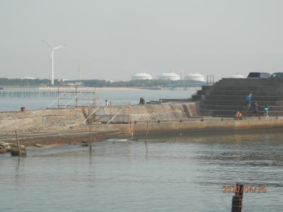 大野漁港の様子を見に行く1と2