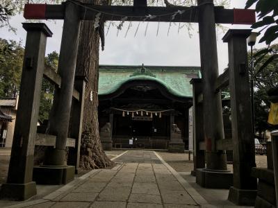 新型コロナウイルスを避けて近所の二宮神社に散歩/絵馬を見たら嵐ファンの断末魔に似た叫びであふれていました