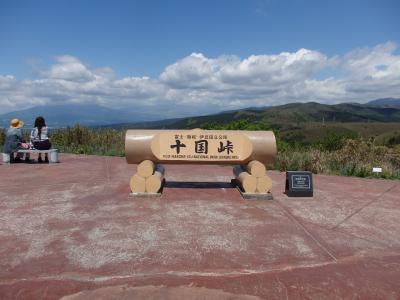 岩戸山ハイキングと姫の沢公園のツツジ