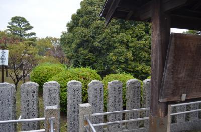 播州の松巡り