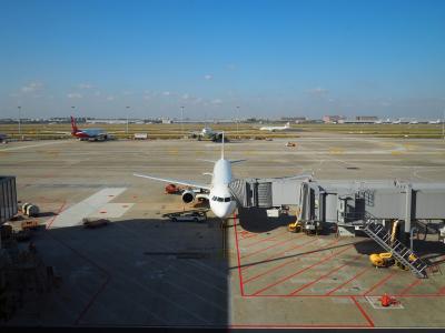 2019.11 ベトナムに行ってみよう(14)上海浦東国際機場・新サテライトでの乗継で、名古屋へフライト