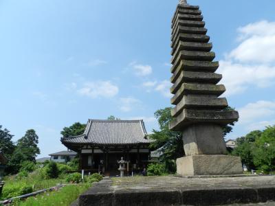 『642PIZZA(ロッシーニピザ)』でランチ~奈良の『般若寺』で紫陽花&コスモス