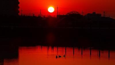 久し振りの早朝散歩 安倉上池で、日の出の太陽を拝みました。
