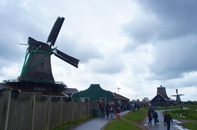 色づくオランダの春から 2 ザーンセ スカンス