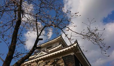 おさんぽ浜松城公園