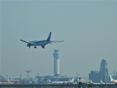 「 羽田空港が見える公園 自転車でさんぽ 」 2020