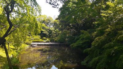 浜松城公園&浜松市内中心部散策記 2020・05